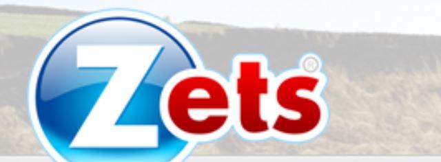 Zets oferece proposta de franquias virtuais (Foto: divulgação)
