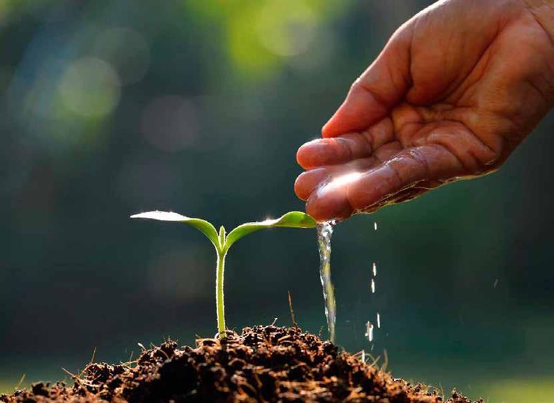 empreendedorismo verde no Brasil