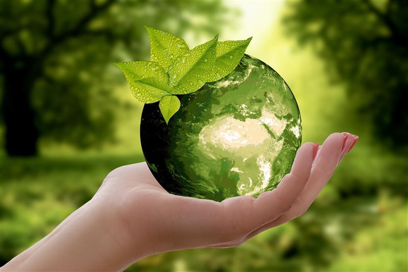 importância do empreendedorismo verde