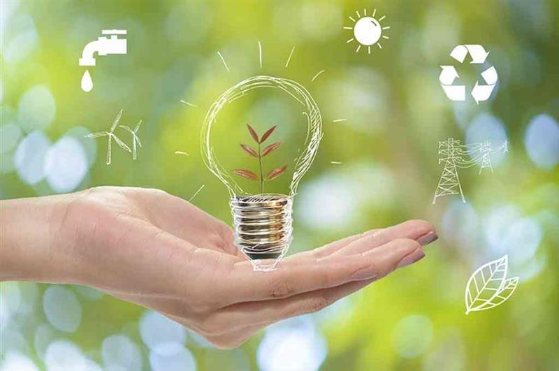 O que é empreendedorismo verde